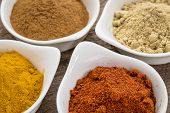four healthy spices (turmeric, ginger, cinnamon and paprika) in white bowls