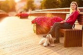 Young woman with shih-tzu dog sitting on bench on wooden bridge in europe town. Red sunset light.