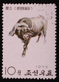 North Korea - 1975: Postal Stamp Printed In North Korea Shows An Image Of An Buffalo On A White Back