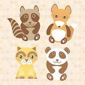 picture of raccoon  - Funny cute raccoon panda fox cat on dot background - JPG