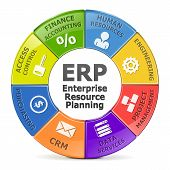 picture of diagram  - Diagram of Enterprise resource planning system isolated on white background - JPG