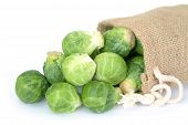 picture of brussels sprouts  - brussel sprouts fall out bag on white background - JPG