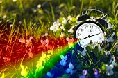 pic of end rainbow  - Alarm clock placed among the flowers representing the end of winter - JPG
