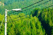 picture of power transmission lines  - old power electricity line with lamp outdoor green blurred background - JPG