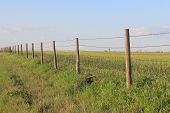stock photo of prairie  - Rustic fence taken in the Great Plains prairie lands during spring - JPG