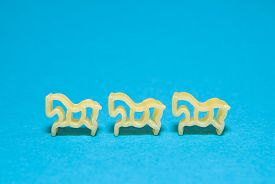image of hackney  - Pasta in the form of animals on a blue background - JPG