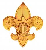 picture of boy scouts  - boy scouts of america logo or emblem - JPG