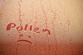 Pollen Text & Frown On Car Hood