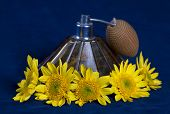 Vintage Perfume Bottle Surrounded And Yellow Flowers
