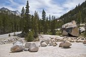 Tioga Road at Olsted Point, Yosemite