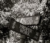 Proper Thought And Proper Work Avenues: Street Signs