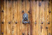 Lion Head Door Knocker on aged wooden door with knobs poster