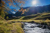 Idyllic Path Beside Little Brook In Autumnal Swiss Landscape poster