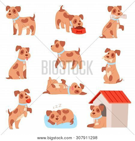 poster of Dog Vector Little Doggie Puppy Animal Character Playing Or Sleeping Illustration Animalistic Doggy S