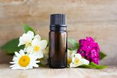 Spa Perfume Essential Aroma Oil Glass Bottle With Flower Blossoms On Old Wooden Background poster