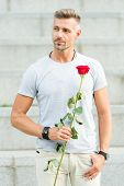 Romantic Gentleman. Man Mature Macho With Romantic Gift. Little Romance Can Enhance Your Love Life.  poster