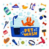 Pet Grooming Concept. Happy Dog In A Bath With Foam And Goods For Bathing On White Background. Dog C poster