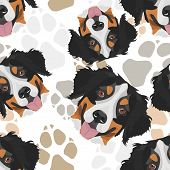 Dog Paws Pattern Bernese Mountain Dog poster