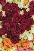 Bright Multicolored Bouquet Of Roses. Multicolored Fresh Roses Background. Plenty Of Colorful Bright poster