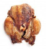 a roast chicken on a white background