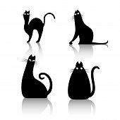 Black Cats On A White Background. Vector Illustration Of Cats. Cats Symbol, Black Cats Icons. poster