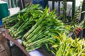 Street Vegetable Shop With Local Herb In The Thai Market. Swamp Morning Glory, Thai Water Convolvulu poster