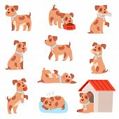 Dog Vector Little Doggie Puppy Animal Character Playing Or Sleeping Illustration Animalistic Doggy S poster