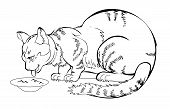 Sketch Of My Always Hungry Eating Cat. Black And White Page For Coloring Book. Hand-drawn Vector Ima poster