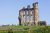 picture of tyne  - Overlooking the North Sea and the River Tyne Tynemouth Castle and Priory on the coast of North East England was once one of the largest fortified areas in England.