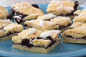 picture of fruit platter  - Blueberry fruit dessert bars on a platter - JPG