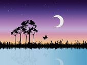 stock photo of wane  - Vector landscape image of a starry night in marshlands - JPG