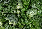 stock photo of vegan  - Green vegetables and dark leafy food background as a healthy eating concept of fresh garden produce organically grown as a symbol of health as kale swiss chard spinach collards broccoli and cabbage - JPG