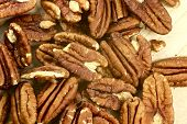 stock photo of pecan tree  - Pecans  - JPG