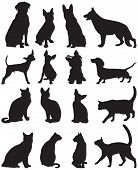 image of siamese  - Vector set of silhouettes of cats and dogs - JPG