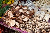 asian mushrooms