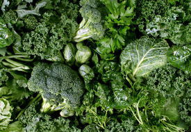picture of organ  - Green vegetables and dark leafy food background as a healthy eating concept of fresh garden produce organically grown as a symbol of health as kale swiss chard spinach collards broccoli and cabbage - JPG