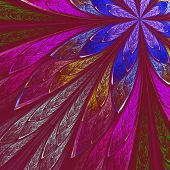 Multicolor Fractal Flower On Vinous Background. Computer Generated Graphics.