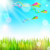 Summer sunny landscape with green grass and colorful kites flying in the sky - vector illustration
