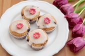 Pink Spring Cupcakes