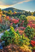 View from the Main hall of Kiyoizu-dera Temple with Autumn Ambience in Kyoto