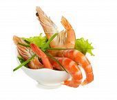 Tiger Shrimps Isolated On White