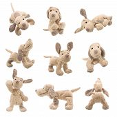 foto of stuffed animals  - Stuffed puppy dog animal - JPG