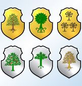 Vector Heraldic elements set