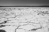 Cracked Ground Black And White