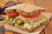 foto of avocado  - A healthy vegetable sandwich with avocado alfalfa sprouts tomatoes and lettuce on sprouted nut and seed bread - JPG