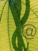 Email Icon, At Symbol Concept