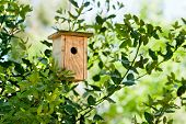 Wooden Birdhouse Hanging In The Tree