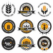Organic Wheat Label Set