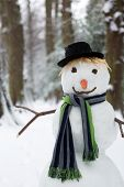 Good looking snowman standing in the park in winter