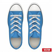 pair of blue simple sneakers. Realistic Vector Illustration.